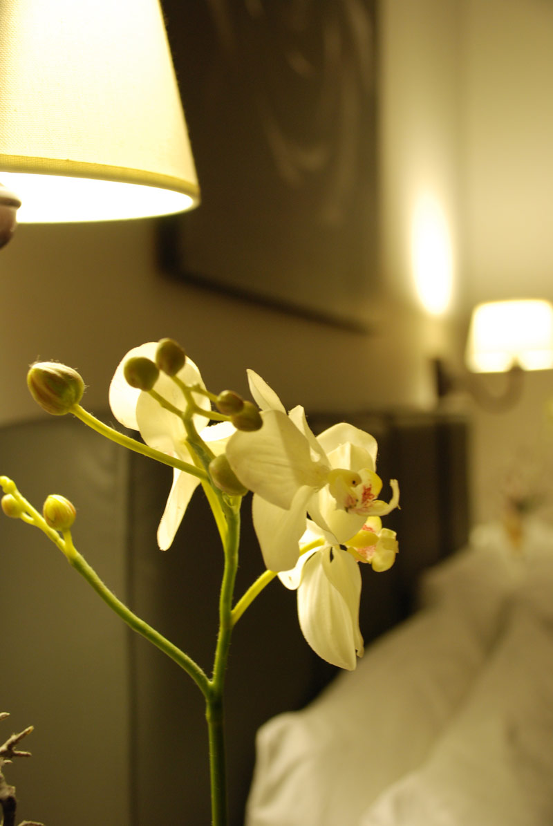 Chromotherapy « Maxim B&B – Bed & breakfast Palermo
